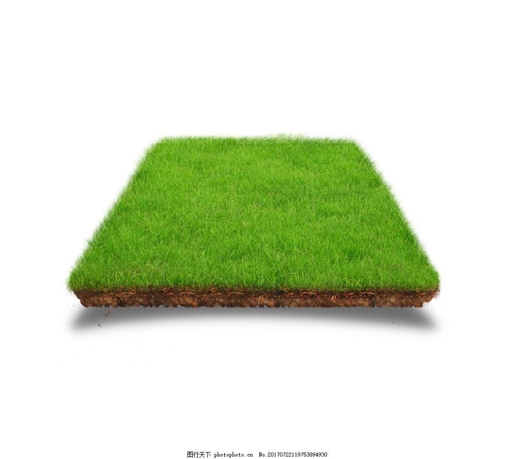 手绘绿色草坪元素