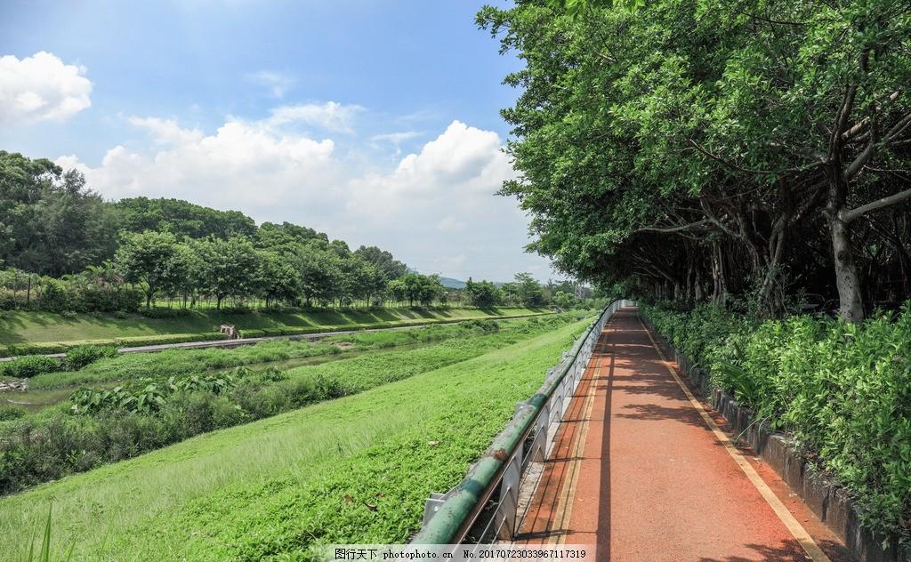 深圳东湖公园 绿道 景区 景点 休闲 行人道 骑车道 摄影 国内旅游