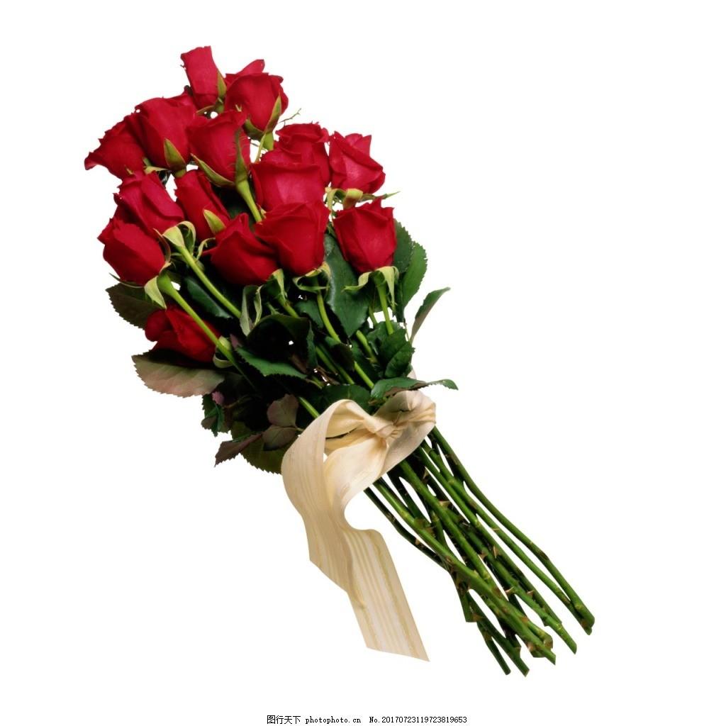 手绘玫瑰花束元素