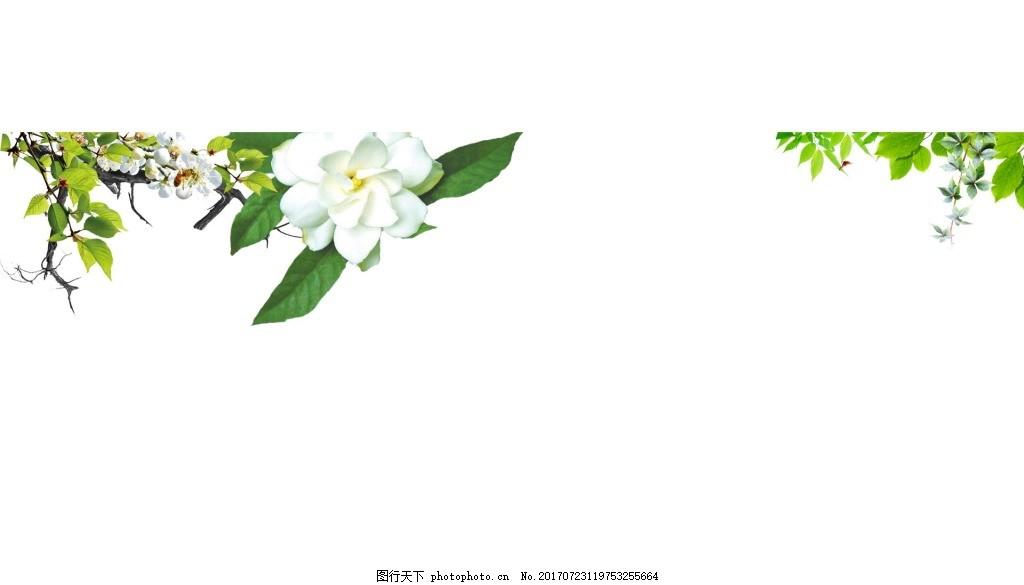手绘花朵绿叶元素 手绘 边框 白色花朵 绿叶 树枝 绿藤 png 免抠 素材