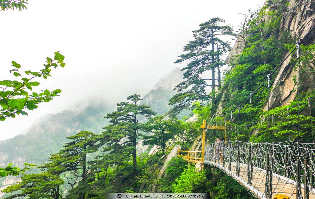 天堂寨风景 索道 自然景色 松树 大别山 自然风景 摄影 国内旅游