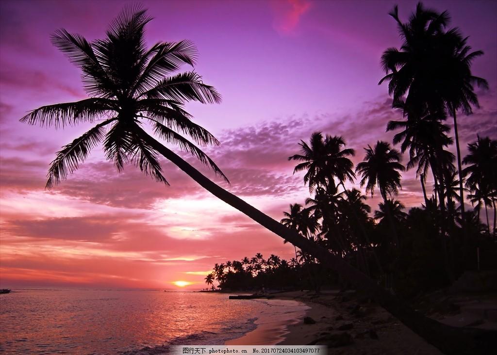 落日黄昏 傍晚 海边 椰树 棕榈树 剪影 海滩 晚霞 摄影