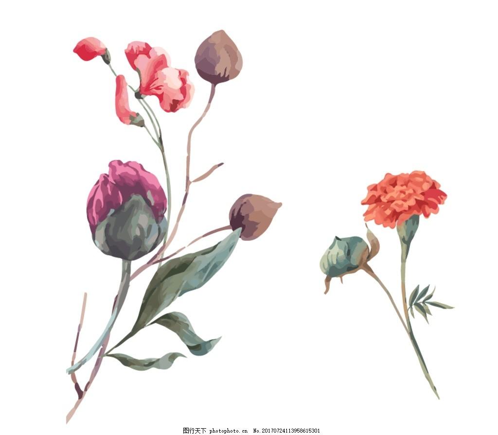 水彩花朵,花卉 手绘花朵素材 矢量花朵 矢量素材 各种