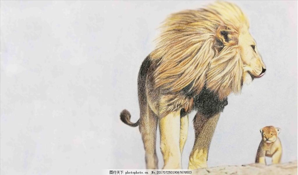 狮子彩铅手绘