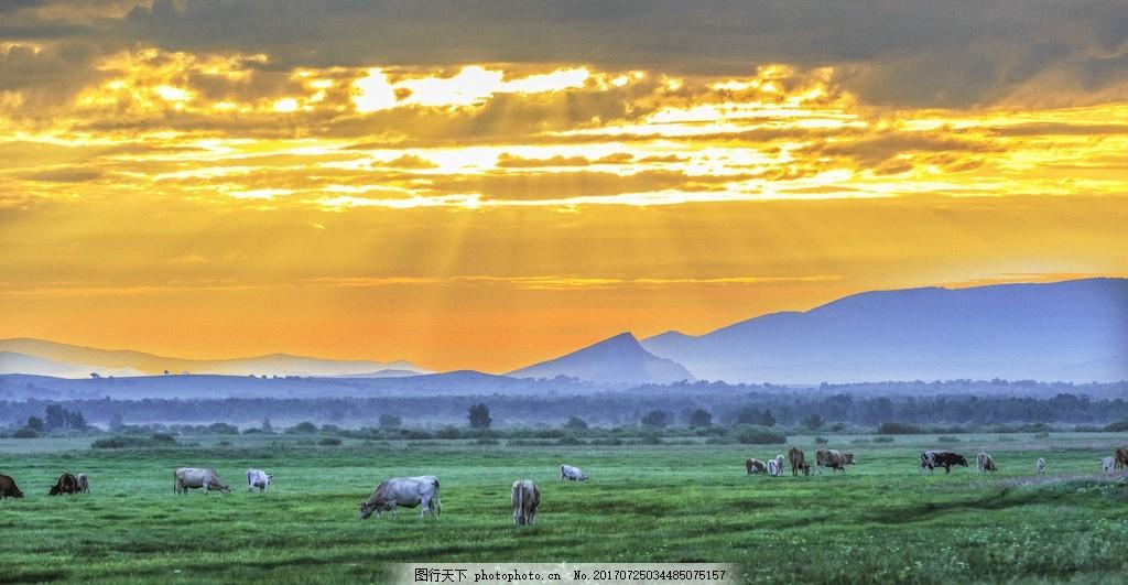锡林郭勒盟草原 山水 风景图 内蒙古草原 河 摄影