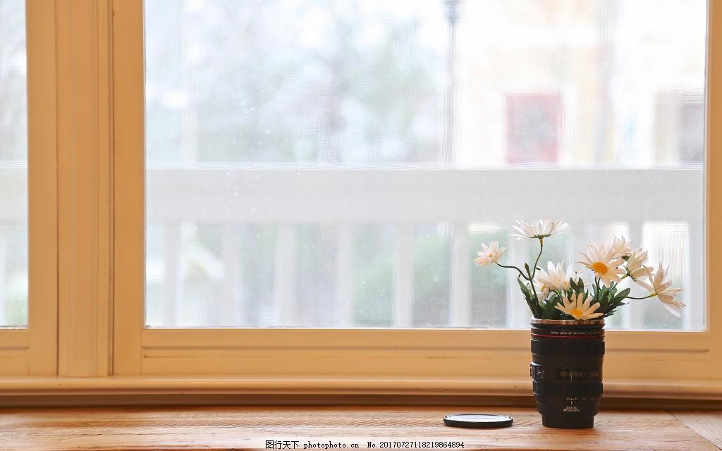 简约窗台小雏菊背景 时尚 玻璃窗 绿植 风景