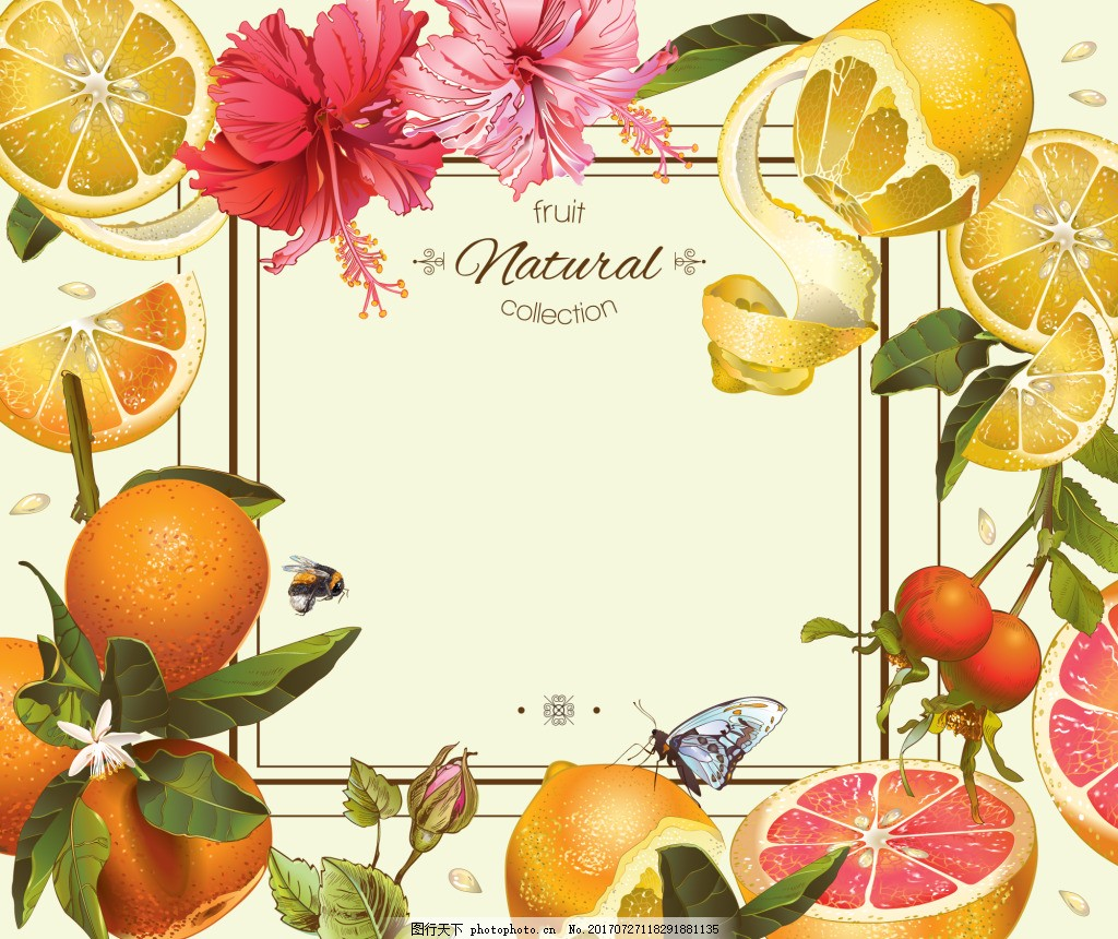 水果边框柠檬蜂蜜矢量背景素材