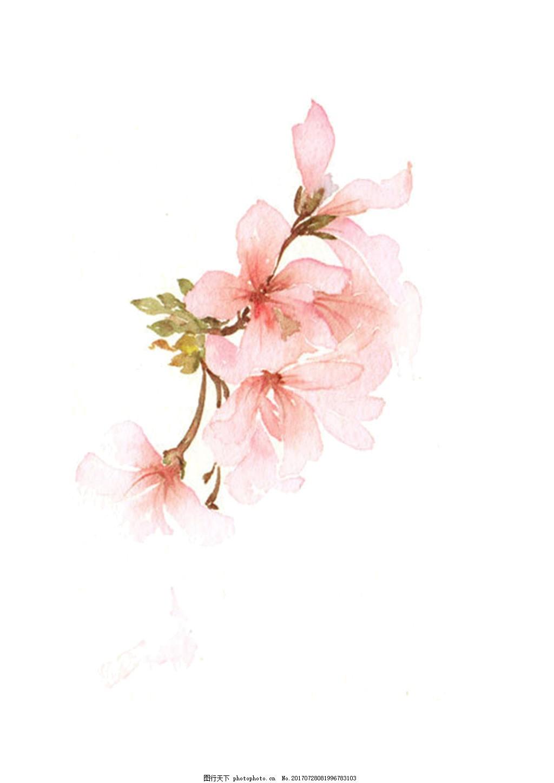 手绘花psd分层素材小清新3 水彩画 手账素材 海报素材 花朵