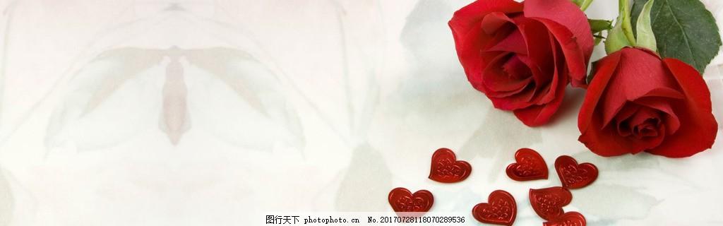 唯美红玫瑰banner背景 背景图 唯美背景 淘宝海报 背景素材