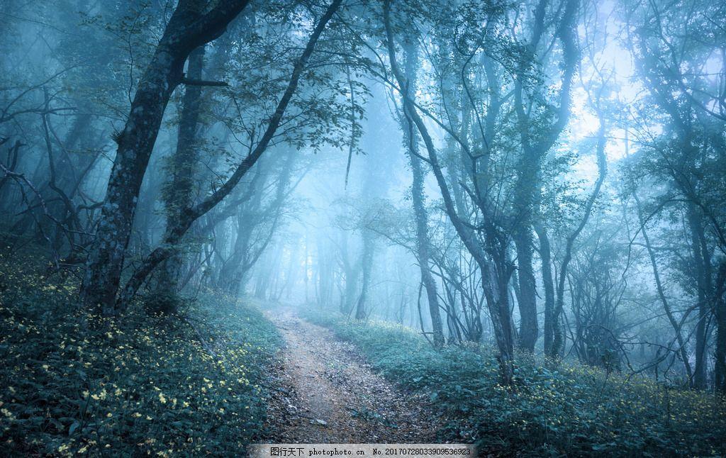 祖山森林 唯美 风景 风光 旅行 自然 秦皇岛 山林 祖山森林公园