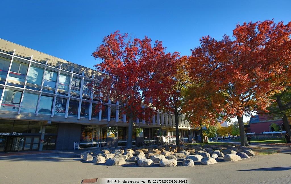 唯美 风景 风光 旅行 自然 美国 大学 哈佛大学 高等学府 文化哈佛