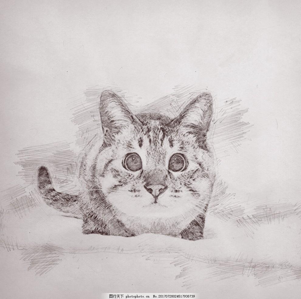 手绘猫星人
