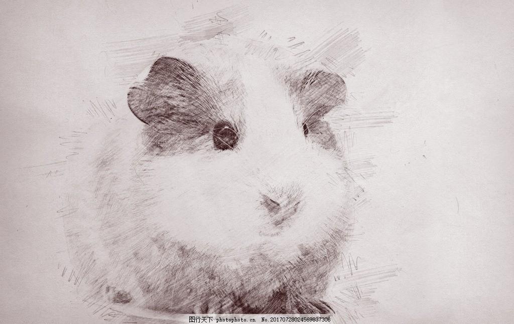 手绘仓鼠 老鼠 仓鼠 手绘 可爱 呆萌 萌 动物 设计 生物世界 家禽家畜