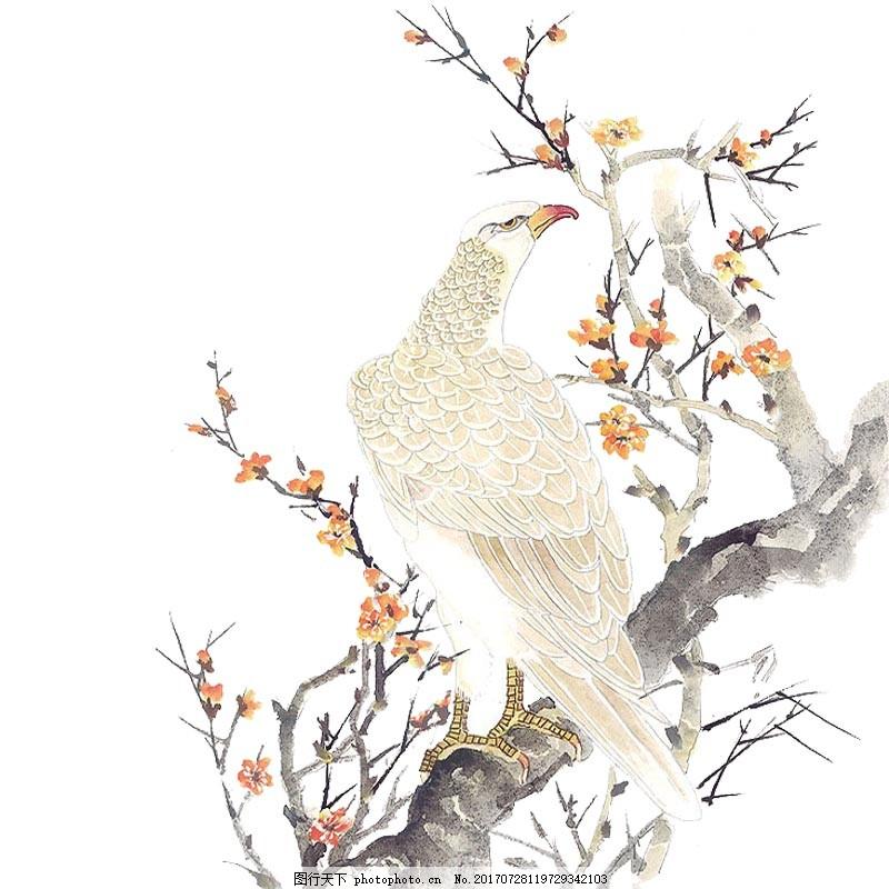 手绘中国风花鸟图元素