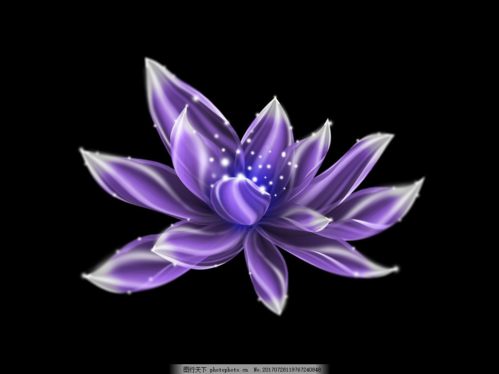 紫色发光花元素 发光的花 闪亮透明花朵 莲花 荷花