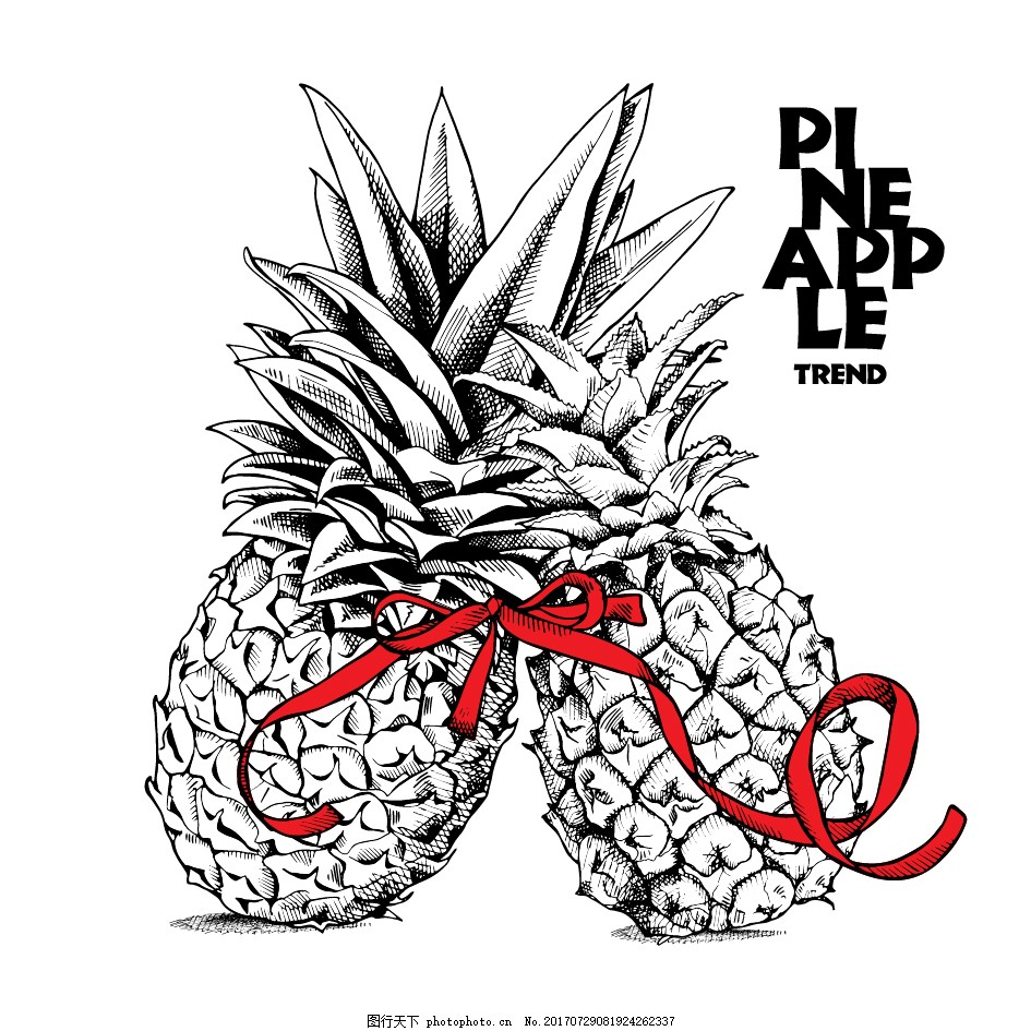 两个系红丝带的菠萝插画 水果 手绘 黑白 热带 植物 爱情