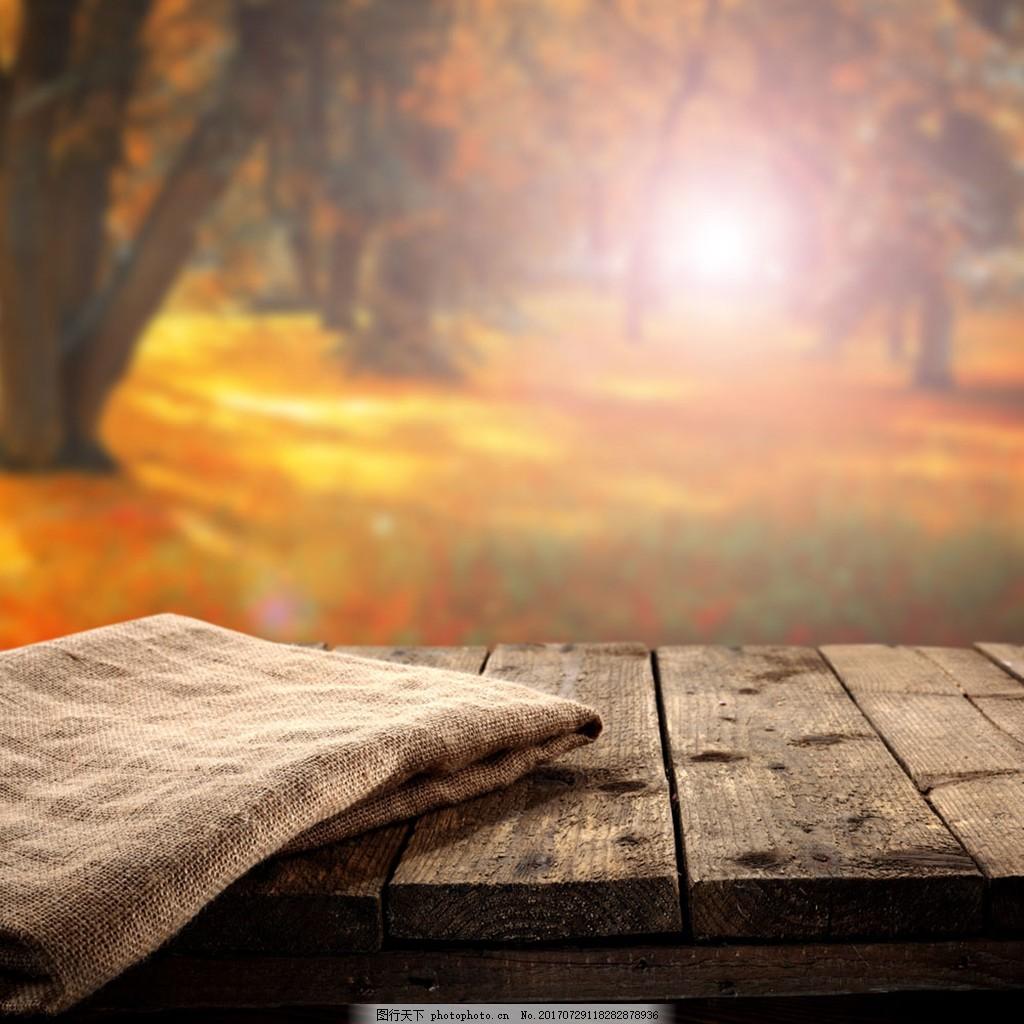 金秋森林风景背景 梦幻 唯美 阳光 枫叶林 木板