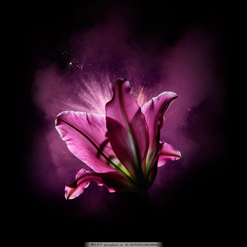 紫色素材背景