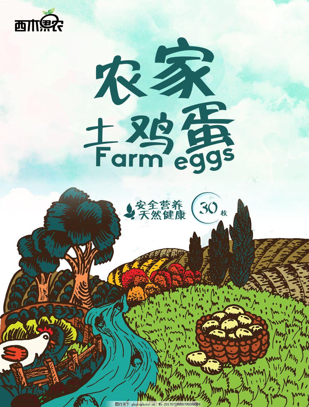 农家土鸡蛋插画海报 鸡插画 农庄插画 手绘 营养 天然 健康