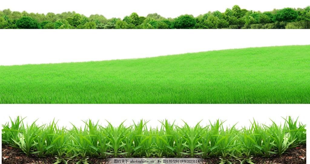 手绘绿草边框元素 手绘 小清新 草丛 森林 大草原 png 免抠 素材 png