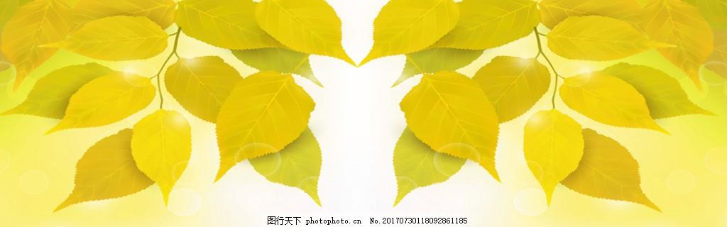 黄色树叶banner背景 背景图 唯美背景 淘宝海报 背景素材