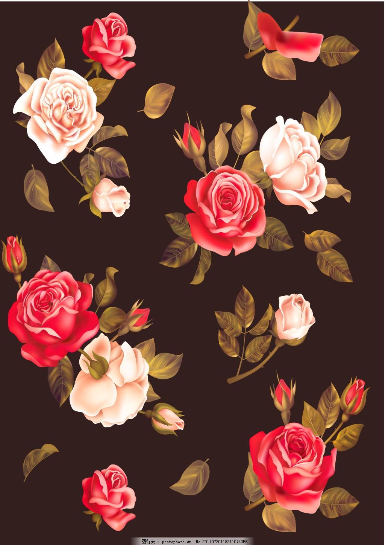 浪漫花朵黑色背景 唯美 爱情 月季 玫瑰 黑色海报