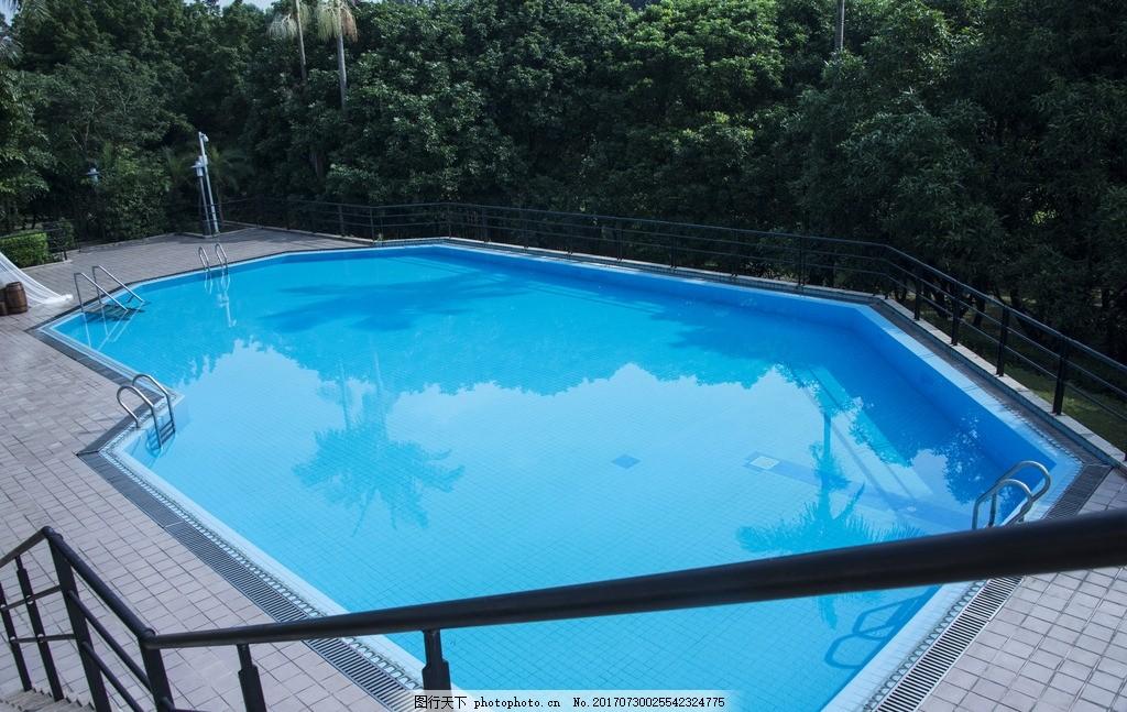 游泳池 水池 别墅后花园 大泳池 摄影 生活素材