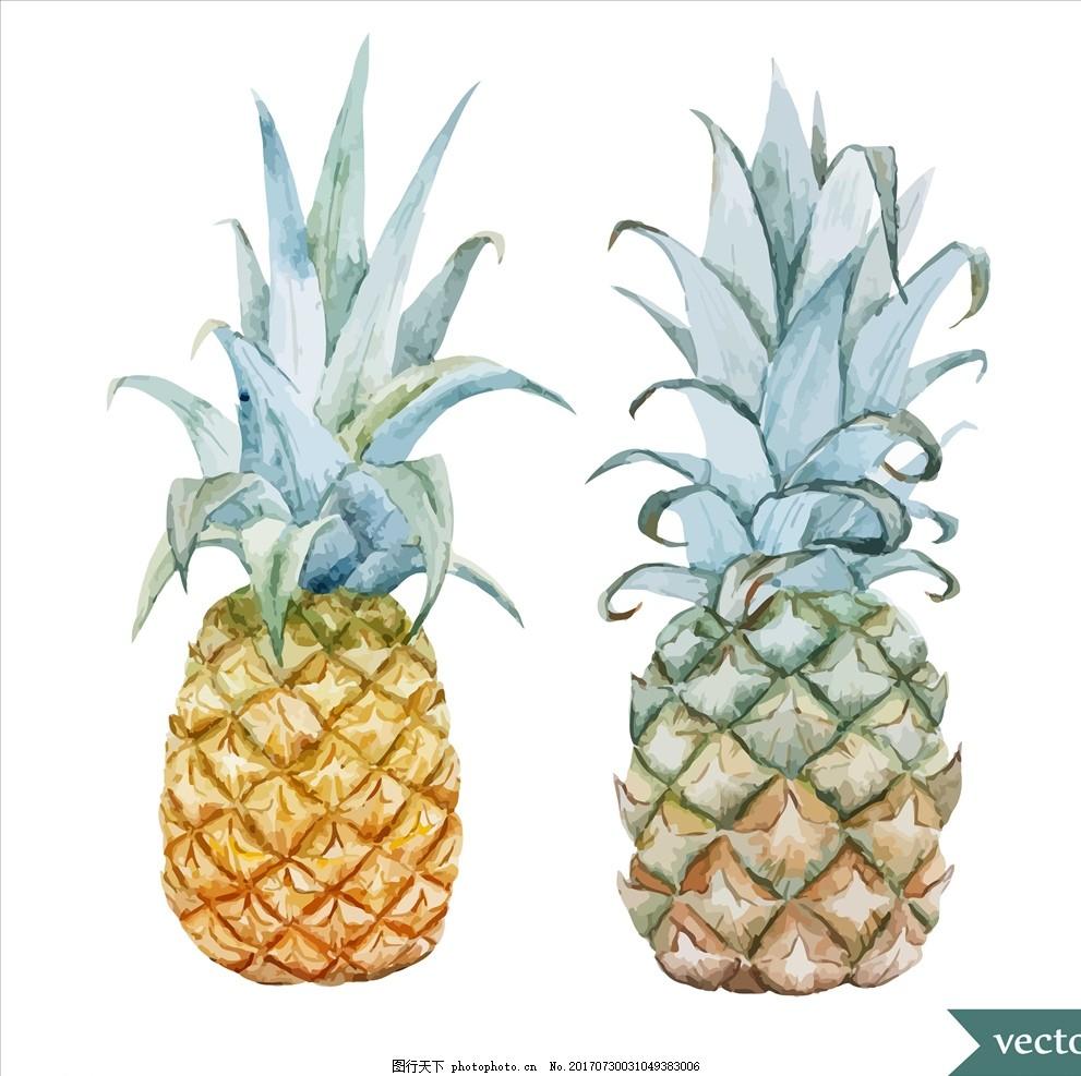 手绘菠萝,菜单 海报 水果 水彩 美味 美食 天然食材