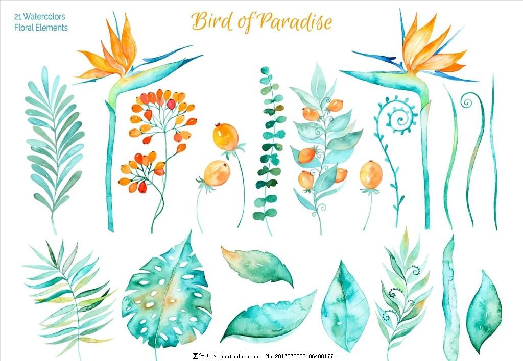 水彩花朵插画 水彩叶子 手绘 装饰画 婚礼 花篮 玫瑰花 贺卡
