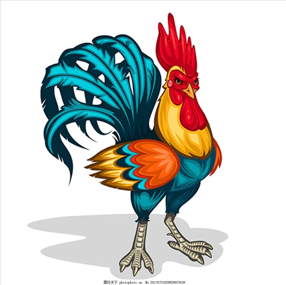 手绘卡通公鸡插图