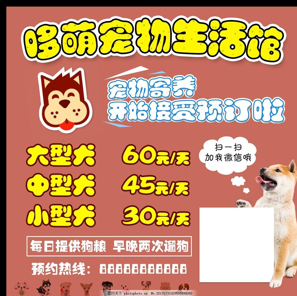 宠物生活馆 价目表 可爱背景 排版 卡通