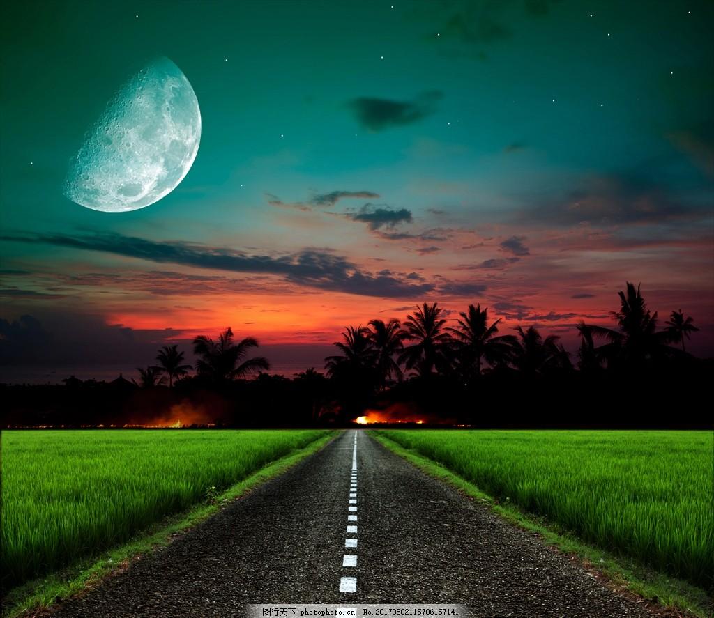 公路 夜晚 月亮 树木 草地 森林 晚上 云 剪影 自然风景 摄影 自然