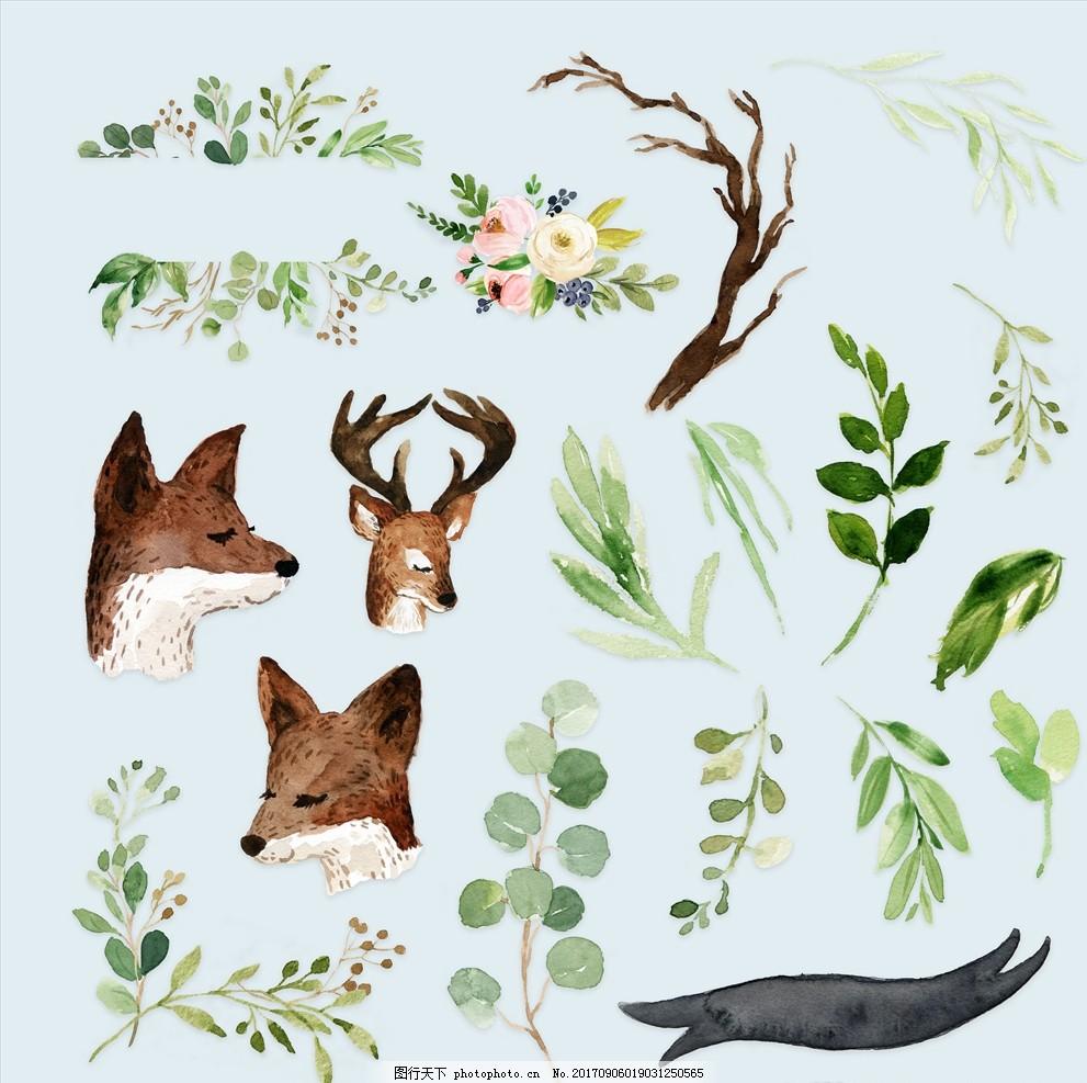 水彩动物植物绘画