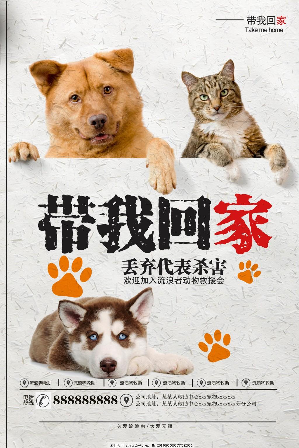关爱流浪猫狗公益矢量宣传海报,关爱动物 善待动物