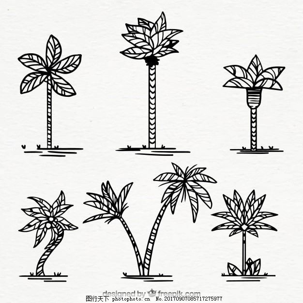 一套手绘棕榈树