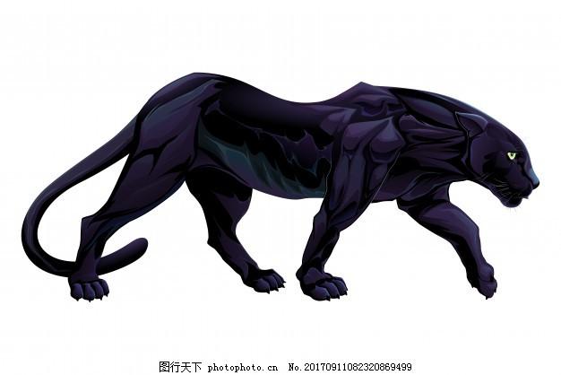 黑豹 自然 卡通 动物 漫画 散步 野生 野生动物 野兽 捕食者