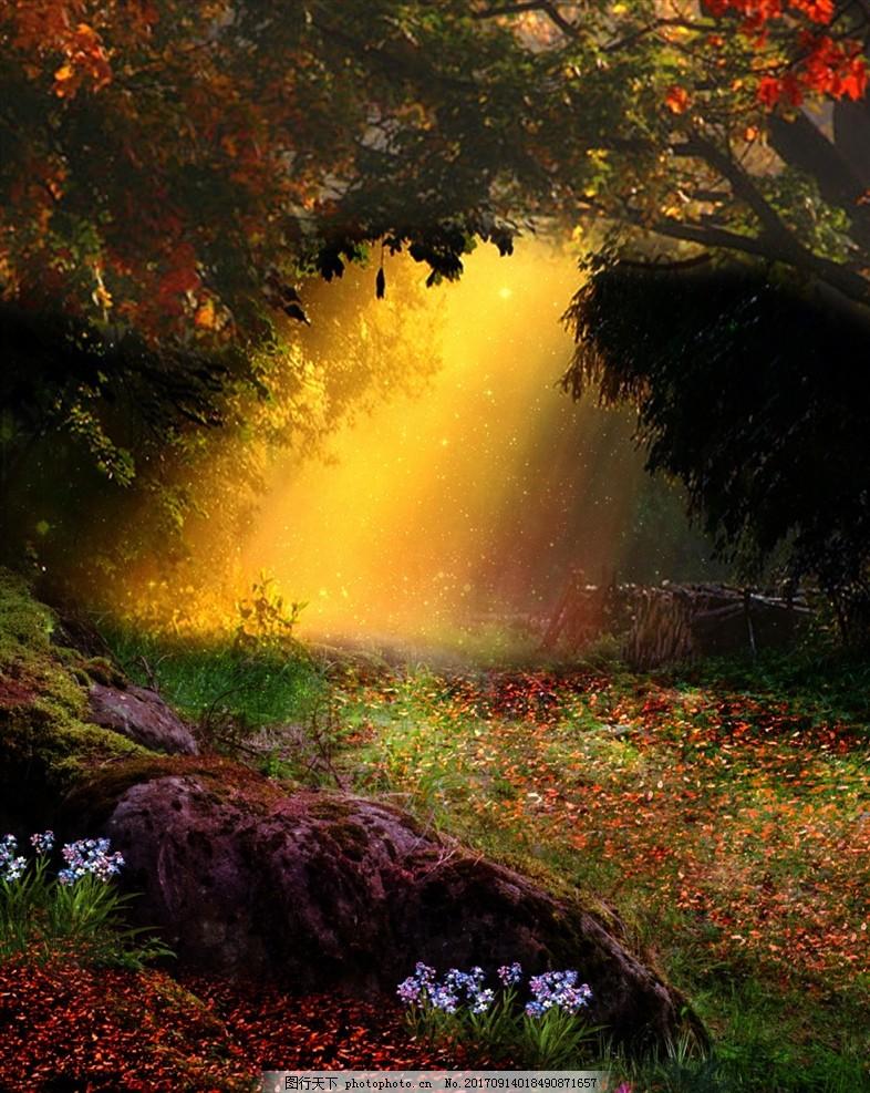 森林背景 梦幻森林 原始森林 奇幻森林 梦幻丛林 卡通森林 幽暗森林