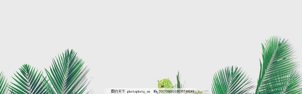清新绿色叶子banner背景素材,绿色植物